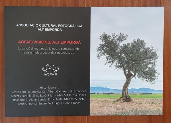 Exposició a l'Ajuntament de l'ACFAE