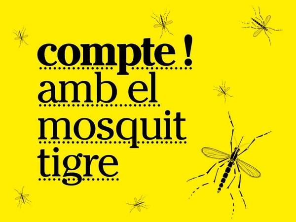 Breus vídeos sobre tot el que has de saber per lluitar contra el mosquit tigre