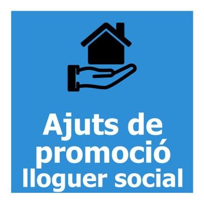 Ajuts a la promoció del lloguer social
